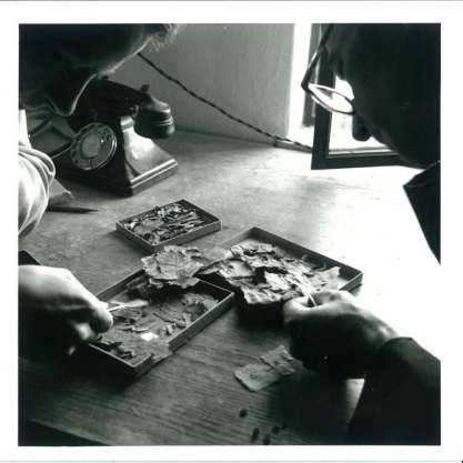 John Allegro and Joseph Milik with scroll fragments, c.1956.