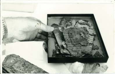 Copy of JMA 7 BOX WITH 11QPS SCROLL FROM BEDOUIN