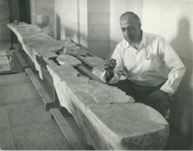 Yusef Saad with plastered benches from Qumran and inkwell, c.1956.